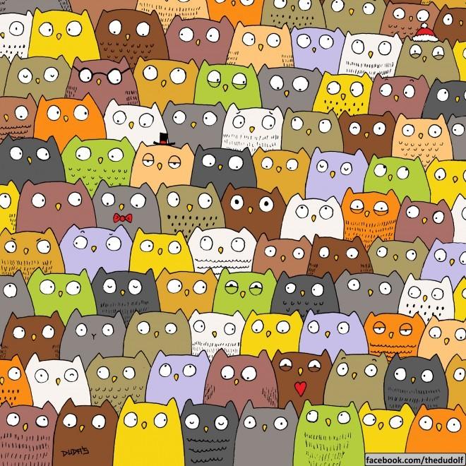 Megtalálod 10 másodperc alatt a macskát?