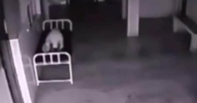 A nő halála után megdöbbentő képeket rögzített a biztonsági kamera