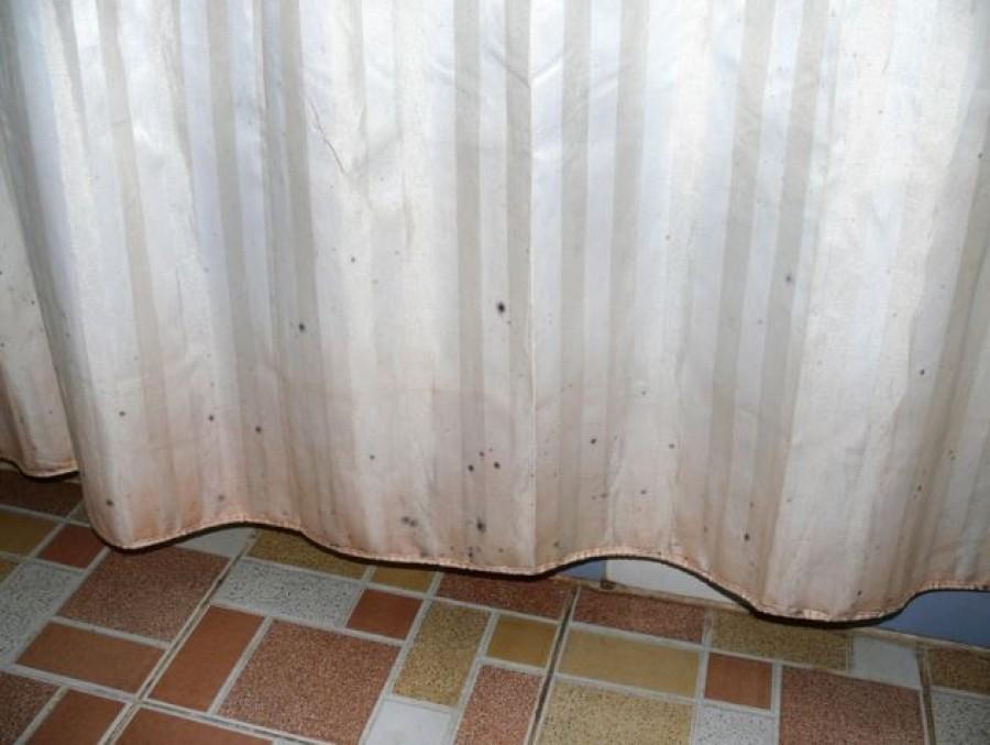 Így tisztítsd a zuhanyfüggöny. Sem a penész, sem a vízkő nem fog megjelenni rajta.