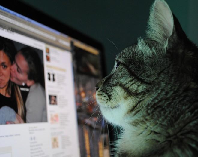 Szeretnéd tudni, kik nézik a Facebook profilodat?