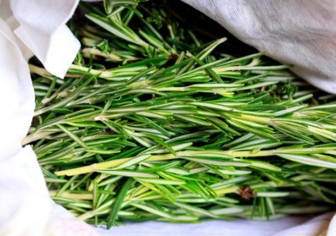Korpásodás ellen használd ezt a jól ismert fűszernövényt! Ráadásul antibakteriális, antioxidáns és gyulladáscsökkentő