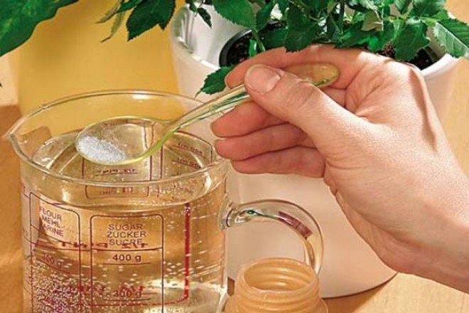 HATÓSÁGI FIGYELMEZTETÉS! Életveszélyes tea került forgalomba!
