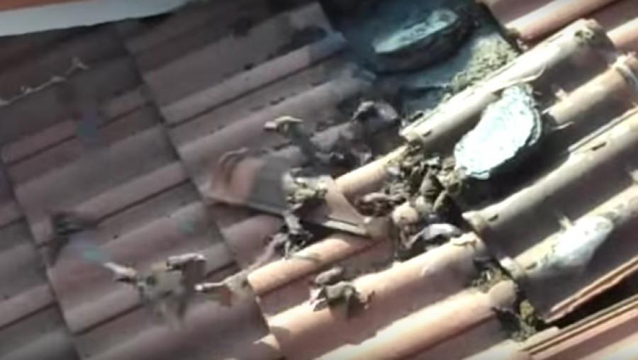 Elkezdték bontani a tetőt, aztán ledöbbentek attól, ami történt!